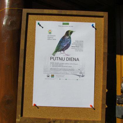 Putnu diena Līgatnes dabas takās 2019